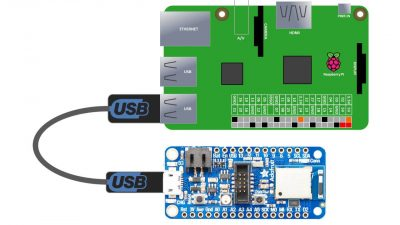 nRF52840 USB to Pi