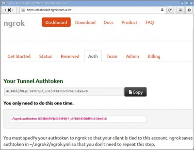 Ngrok Auth Page